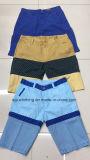 Modo casuale degli uomini di riserva lavato sopra gli Shorts di svago