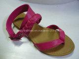 Sandalo - 081