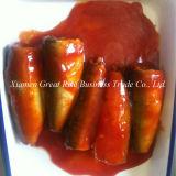 Хороший вкус в одиночку консервированных Sardine в томатный кетчуп