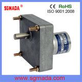 motor micro del engranaje de la C.C. 12V/24V para la industria