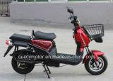 Bici elettrica del carico del EEC 1200With1500W di qualità della Cina (VS5)