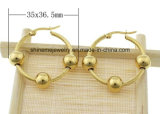De vrouwen vormen de Klassieke Oorring van het Staal van de Oorring van Juwelen (ERS6916)