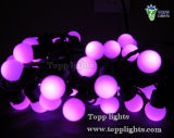 Décoration de Noël 220V / 110V LED Ball String Light