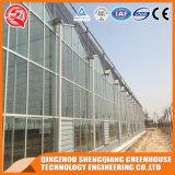 Коммерчески гальванизированная Venlo дом стальной рамки стеклянная зеленая