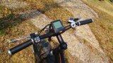 2017 Venta caliente grasa nieve/Beach Bike bicicleta eléctrica con una gran rueda con precio promocional