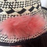 100% соломенной шляпе, Мода Стиль Floppy с печатью образец стиля