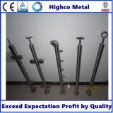 Balaustra dell'acciaio inossidabile/inferriata della scala
