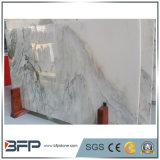 浴室の壁のための美しい景色の静脈の大理石のオニックスの大きい平板