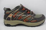 Удобная для использования вне помещений безопасности мужчин походов обувь