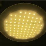현대 상업적인 사무실 Ultrathin 둥근 매트릭스 LED 펜던트 빛