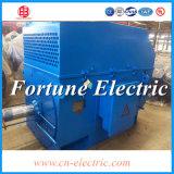 Motore elettrico della macchina di CA di alto tensionamento