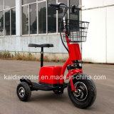Ce certifié 3 roues électrique Zappy Mobility Sightseeing Vehicle 500W
