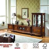 Antikes traditionelles Glasholz gestalteter Tür-Regale Fernsehapparat-Standplatz (GSP15-004)
