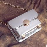 Nuovo sacchetto caldo di Crossbody Shouder della borsa delle donne di modo con la catena Sy8472