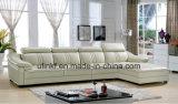 نمط أسلوب [أمريكن] يعيش غرفة أثاث لازم حديثة بناء أريكة ([هإكس-ف621])