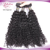 Double Weft Shedding Brazilian Brazilian Curly Hair Extensions