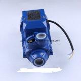 Turbulenz-Pumpe; Zusatzpumpe; Selbstansaugende Pumpe