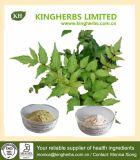 Prodotto in testa alle vendite Dihydromyricetin, estratto del tè della vite