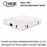 2017 새로운 디자인 상단 판매 형식 침대 매트리스 (FB658)