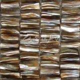 Het zoetwater Shell Mozaïek van de Wortel