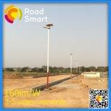 30W LED tutto in un indicatore luminoso del giardino della via con il comitato solare