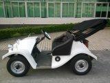 귀족 4 바퀴 2 시트 고전적인 소형 전기 골프 차 스쿠터