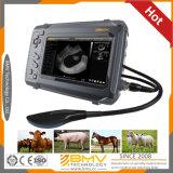 馬の牛ヒツジ動物の妊娠の獣医の携帯用超音波装置