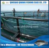 Gaiola elevada dos peixes da taxa de meia com frame de flutuação do HDPE