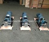 Bomba de rotor de lóbulo de acero inoxidable sanitario con reductor de engranajes