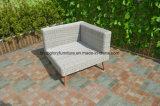 PEの藤及びアルミニウム家具、屋外の庭のソファー(TG-6005)