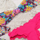 Neue Art heiße reizvolle Giry Drucken-Badebekleidunggesetzter Beachwear-Bikini