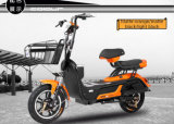 Kühles Sport Style Adult Electric Bike 48V 20ah Front und Rear Drum Brake