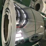 Tira de galvanizado de acero inoxidable/Bobina 310S 309S