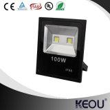 호리호리한 까만 알루미늄 바디 COB/SMD 30W 50W 100W LED 투광램프