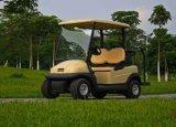 bloco da bateria de 8s3p LiFePO4 24V 30ah para o carro de golfe