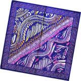 Sciarpa della signora Fashion Printed Square Silk (HC035-1)