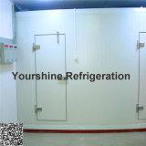 Дверь Fly-Back высокого качества SGS Approved для холодной комнаты/холодильных установок