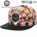 Крышка Snapback шлема туриста Hiphot высокого качества 2016 цветастая для мальчиков & девушок