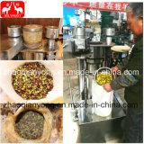 De de groene Pers van de Olie van de Olijfolie Hydraulische/Machine van de Extractie