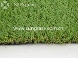 庭または景色(SUNQ-HY00142)のための30mmの合成物質の泥炭