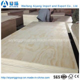 E1 grado álamos Core de chapa de madera de pino frente la madera contrachapada