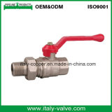 OEM&ODM 질 금관 악기 조합 공 벨브 또는 압축 벨브 (AV1027)