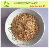 Neues Getreide entwässerte Knoblauch-Körnchen von China, das von FDA, HACCP bestätigt wurde, rein, Halal, Brc, ISO