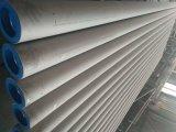 ASTM B36.19 두꺼운 벽 이음새가 없는 스테인리스 관