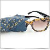 Weiche Sonnenbrille-Supergeldstrafen-Faser, die Tuch abwischt