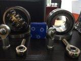 Bearing Nup2206 Em Brass Cage Bearing Nup Series Roller Bearing