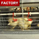 Cage de poulet de couche de matériel de volaille à vendre au Nigéria