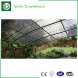 중국 공장 야채를 위한 Hydroponic 플레스틱 필름 녹색 집 또는 과일 또는 꽃