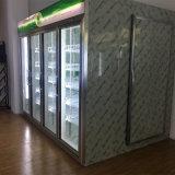Garrafa/Dairy/sumo/Visor de Vidro para alimentos congelados a pé-na sala fria