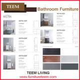 Sale를 위한 북아메리카 Style Modern Bathroom Vanity Cabinet를 가득 차십시오